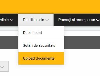 Betfair Upload Documente